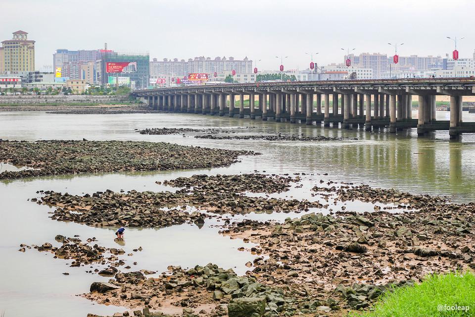 昨日莲阳大桥附近的河段