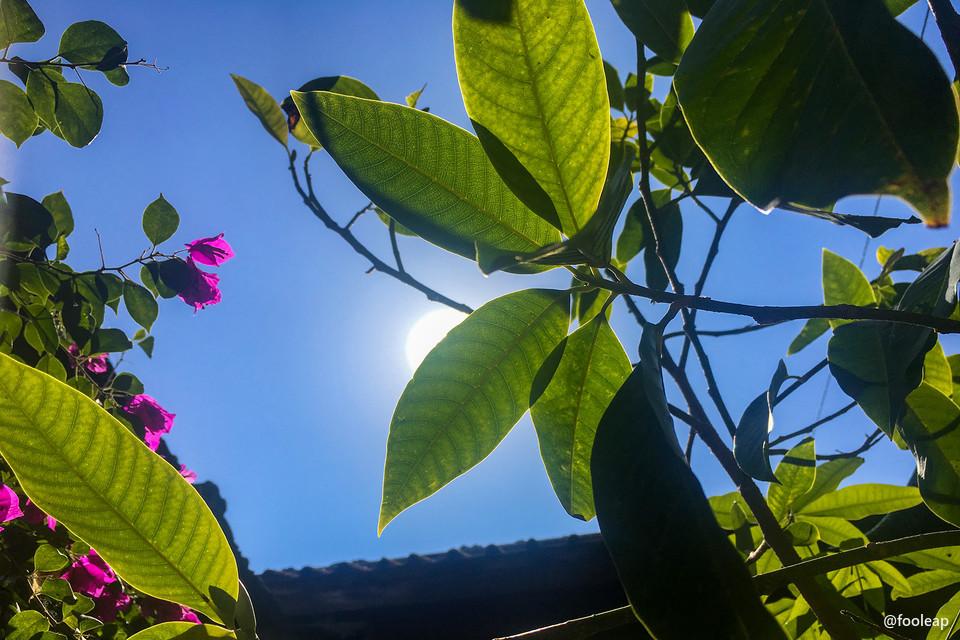 两股冷空气间温暖的阳光