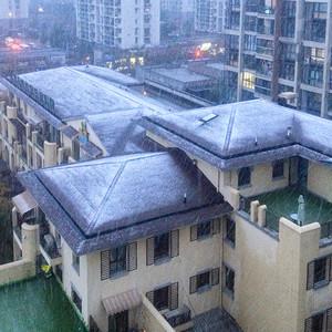 今年冬天杭州的第一场雪