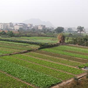 桂林徒步之环城