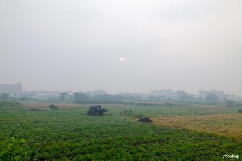 满满是雾,只有太阳露出那么一点点