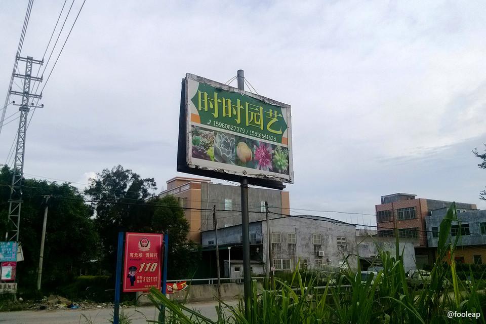 卖多肉的广告牌