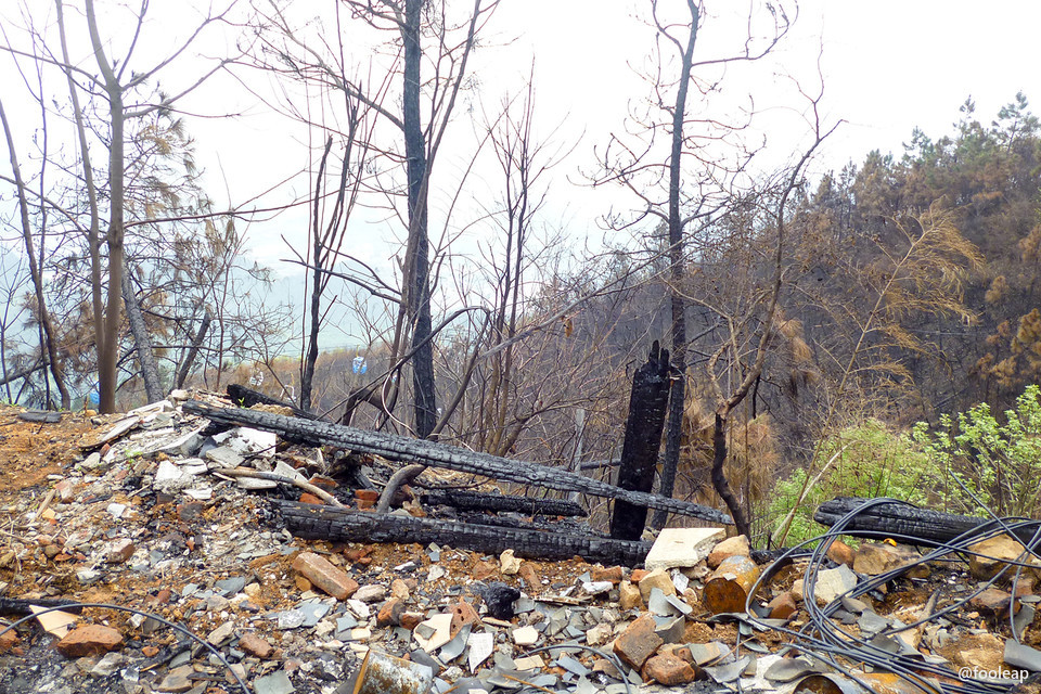 大火后痕迹 2