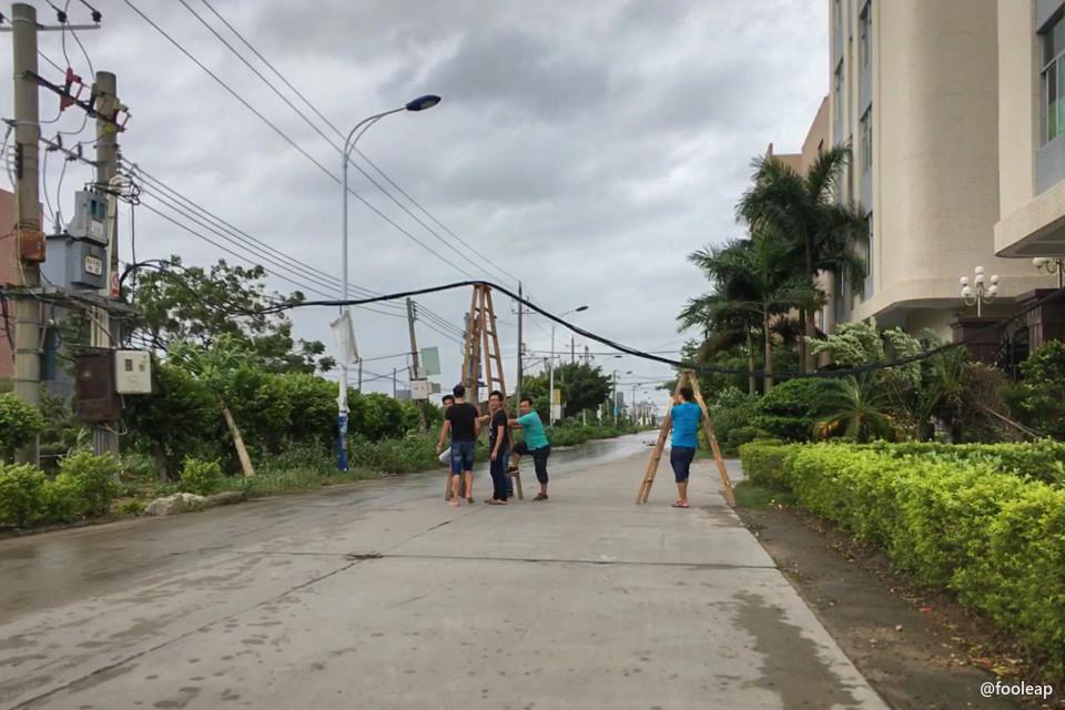 几个年轻人使用梯子支撑东湾路上倒伏的电线